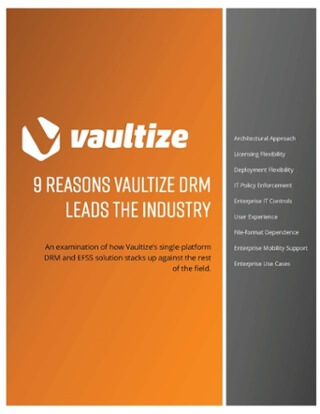 9 Ways Vaultize DRM Mitigates Risk